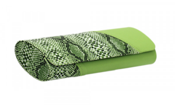 Lederetui mit Magnetverschluss - grün - Schlangenoptik