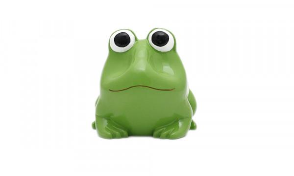 Brillenhalter - Motiv Frosch
